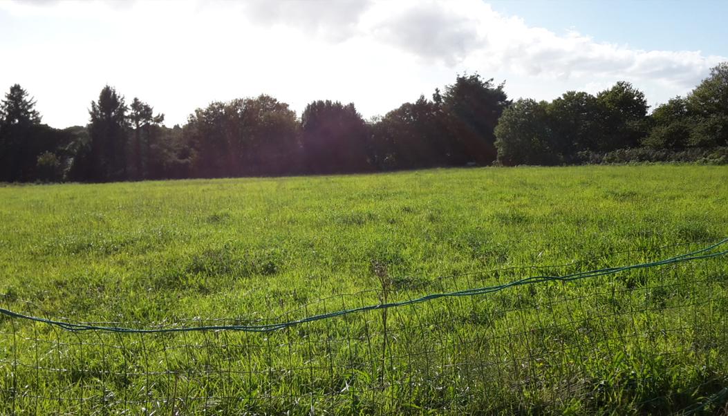 terrain landudec